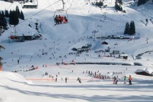 Francouzské Alpy - lyžování ve Francii